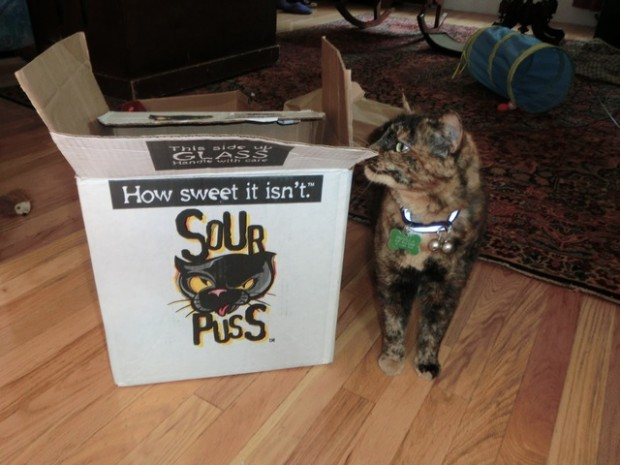 sour puss box